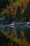 bear lake, rocky mountain national park, colorado, aspen, aspens, aspen trees, fall. autumn, lake, reflection, reflectio