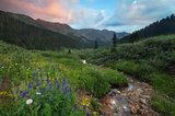 summer, loveland pass, colorado, rocky mountains, wildflowers,