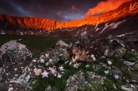 ring of fire, mayflower gulch, colorado, co, blue columbine, columbine, rocks, alpenglow, rockies, light, sunset, clouds