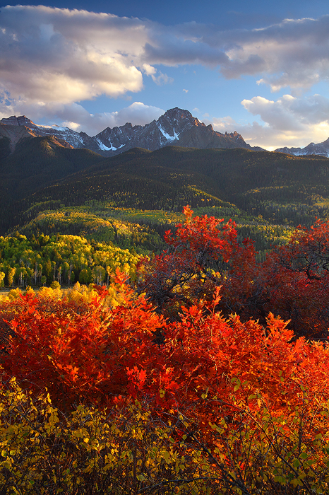 The 14,150 ft. Mount Sneffels rises above an amazing display of autumn color in the valley below. Red isn't a color typically...