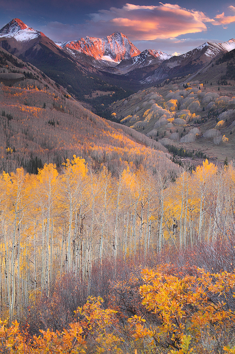 Capitol, Peak, Elk, Mountains, mountain, white, river, national, forest, snow, aspen, aspens, trees, leaves, gold, yello, photo