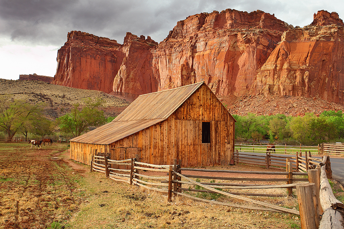 desert, homestead, gifford, capitol, reef, national,  park, farm, horses, horse, fruita, valley, working, farm, lush, gr, photo