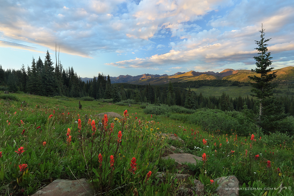 shrine pass, colorado, indian paintbrush, sunset, mountains, summer,, photo