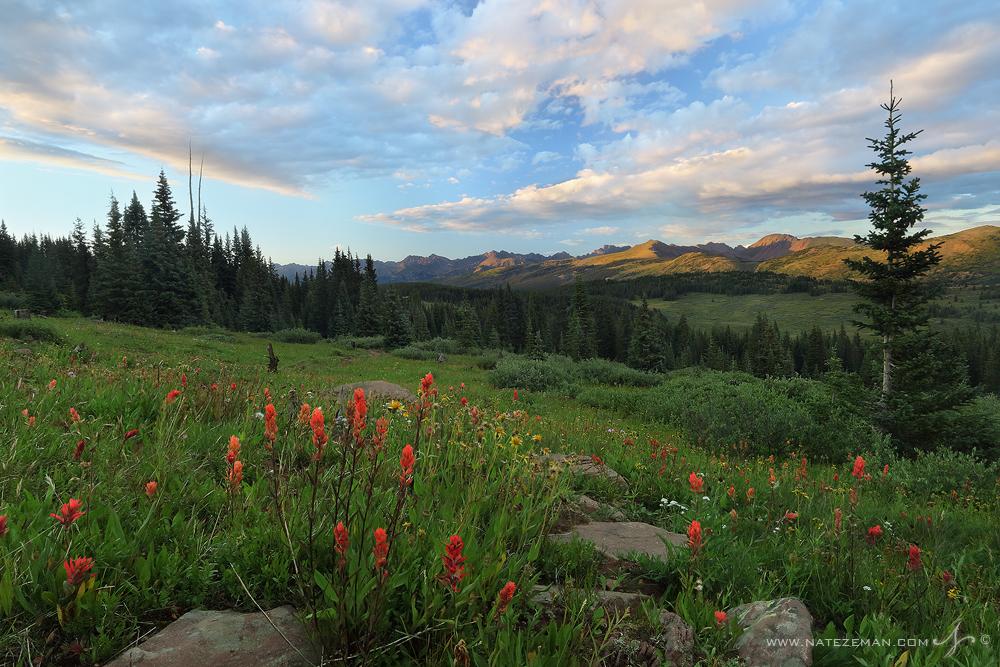 shrine pass, colorado, indian paintbrush, sunset, mountains, summer,, photo