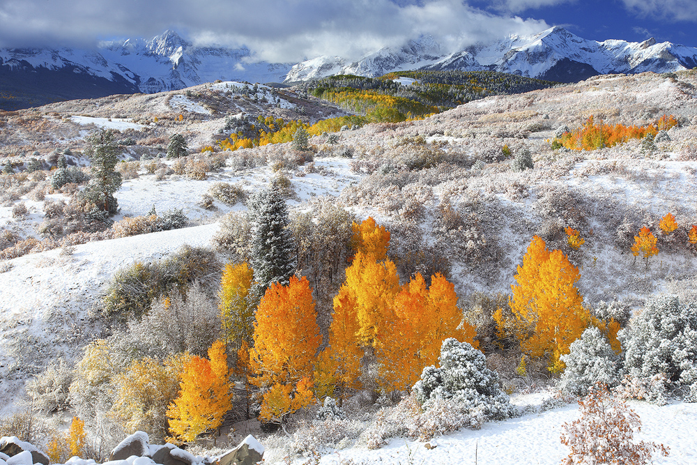 A fresh blanket of autumn snow makes a beautiful contrast to the stunning fall colors in the Colorado Rockies.