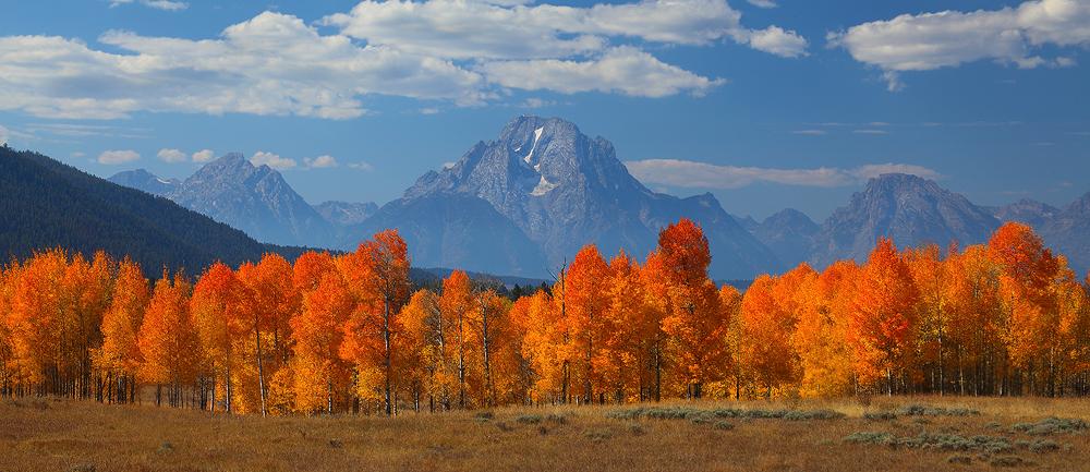 peak, mt moran, moran, grand teton national park, wyoming, teton, tetons, aspen, aspens, fall, october, panorama, photo