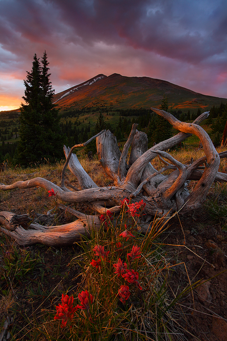 Sunset, baldy mountain, baldy, mt baldy, breckenridge colorado, breckenridge, colorado, ten mile range, boreas pass, whi, photo